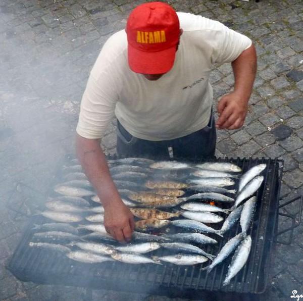 Sardinen, portugiesische Traditionen, geröstete Sardinen, Portugal, Alfama, Lissabon Partys