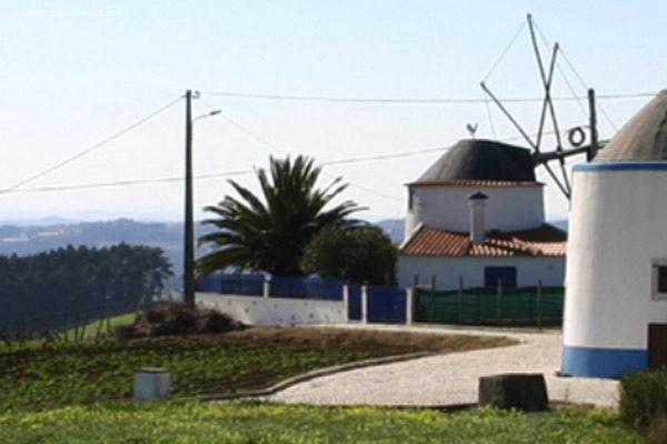 Lourinhã, Empresas, Mudanças Lisboa, Empresas Mudanças Lourinhã, Mudanças, zona centro, Sul, Lourinhã, Região de Lisboa, Portugal, Transportadoras Lisboa
